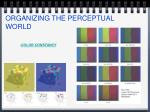 organizing the perceptual world24