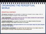 organizing the perceptual world26