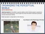 organizing the perceptual world4