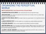 organizing the perceptual world5