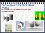 organizing the perceptual world6