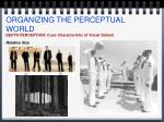 organizing the perceptual world7