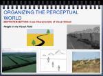 organizing the perceptual world8