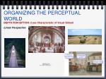 organizing the perceptual world9