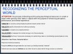 recognizing the perceptual world4