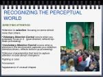 recognizing the perceptual world5