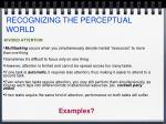 recognizing the perceptual world7