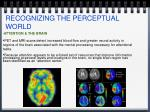 recognizing the perceptual world9