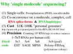 why single molecule sequencing