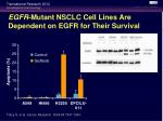 egfr mutant nsclc cell lines are dependent on egfr for their survival