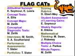 flag cats