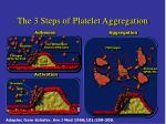 the 3 steps of platelet aggregation