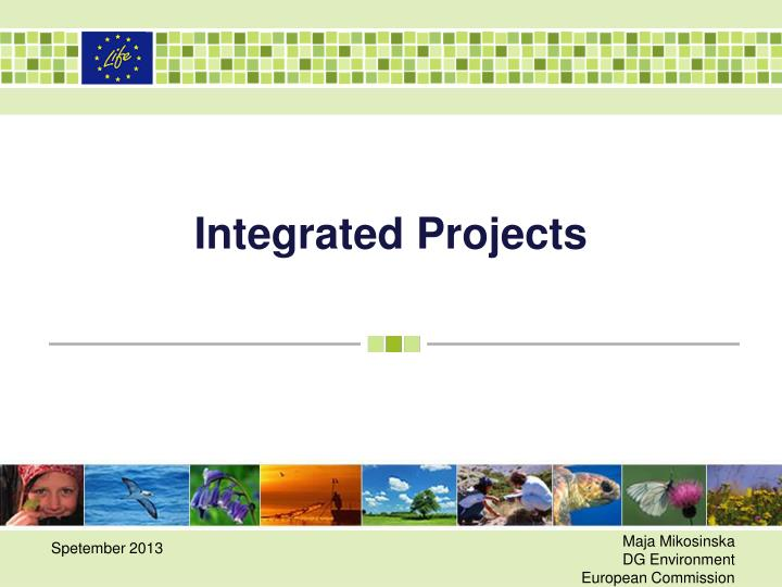 integrated projects n.