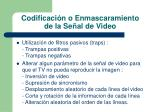 codificaci n o enmascaramiento de la se al de video