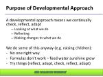 purpose of developmental approach