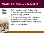 what is the statutory authority