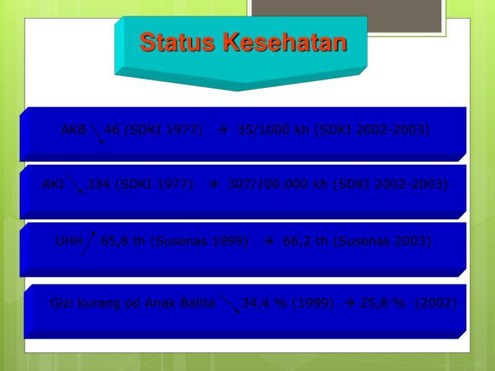 Status Kesehatan