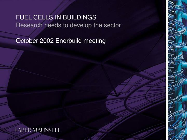 fuel cells in buildings n.