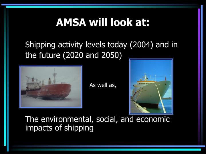 AMSA will look at: