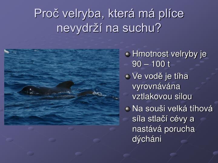 Proč velryba, která má plíce nevydrží na suchu?