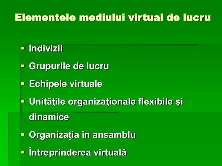 Elementele mediului virtual de lucru