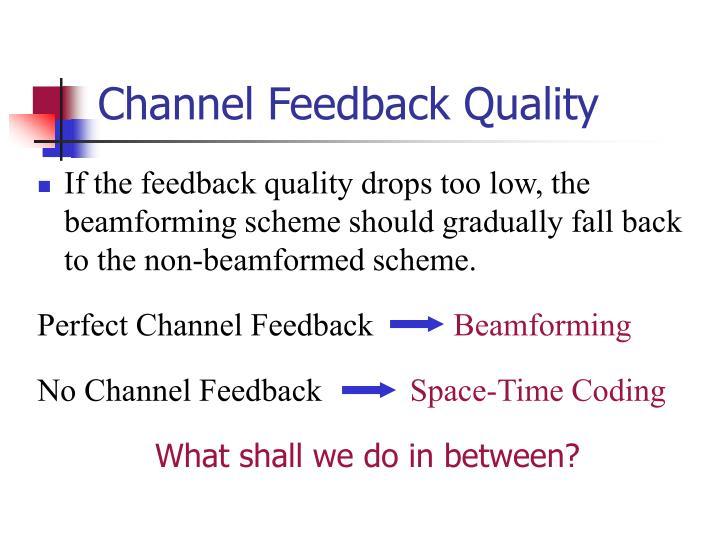 Channel Feedback Quality