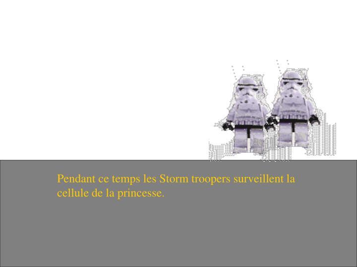 Pendant ce temps les Storm troopers surveillent la cellule de la princesse.