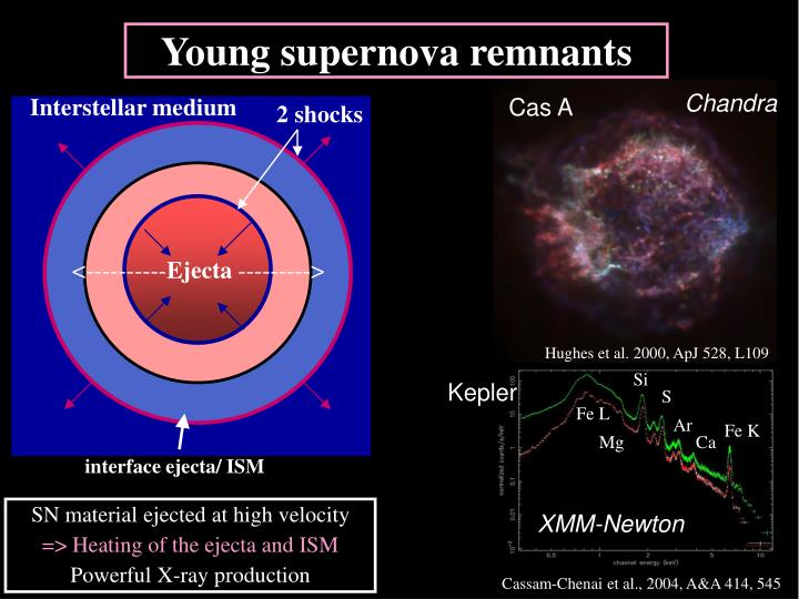 Young supernova remnants