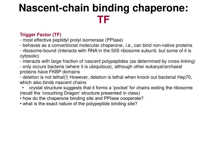 Nascent-chain binding chaperone: