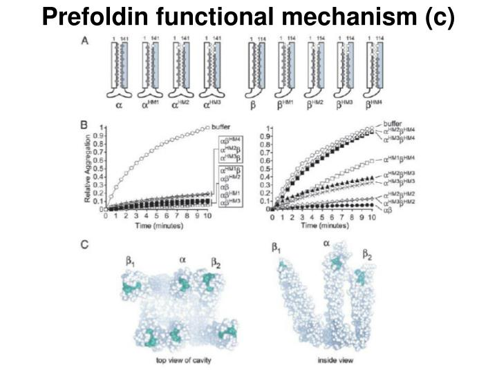 Prefoldin functional mechanism (c)