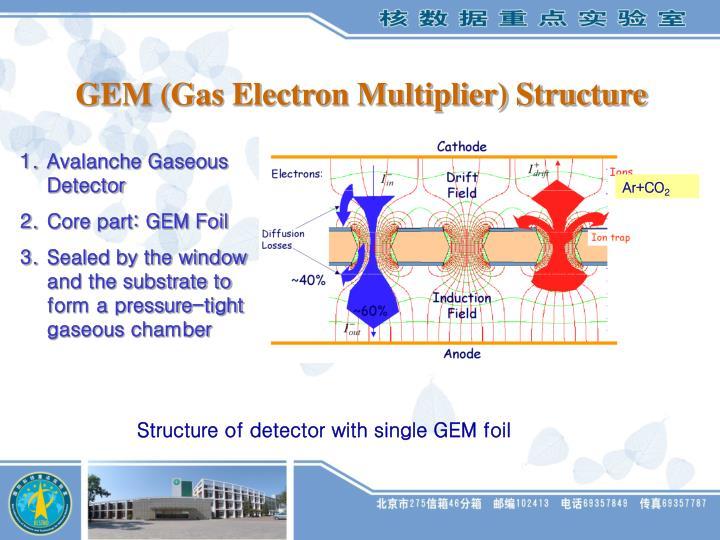 GEM (Gas Electron Multiplier) Structure