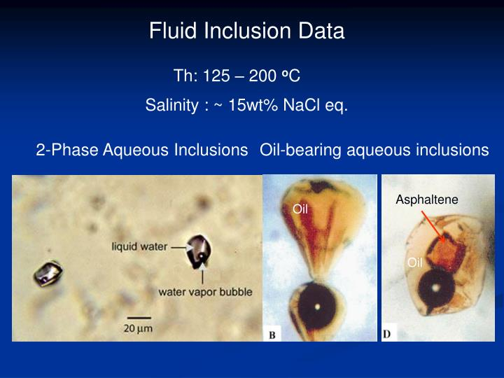 Fluid Inclusion Data