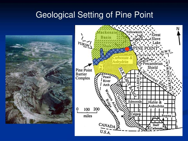 Geological Setting of Pine Point