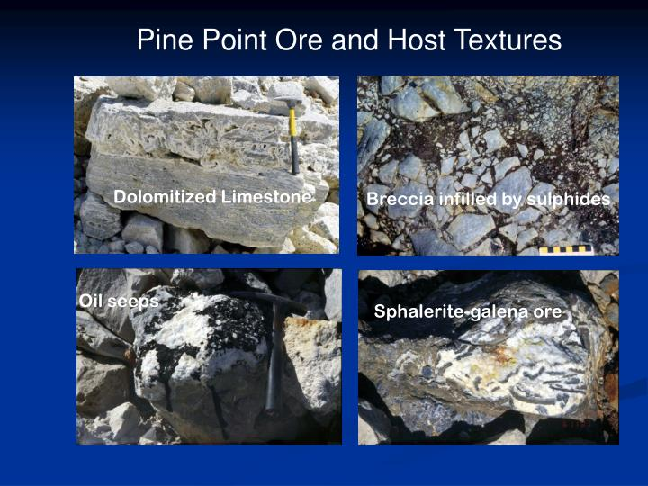 Pine Point Ore and Host Textures