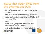 issues that deter smes from the internet and icts