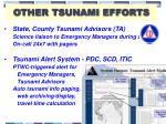 other tsunami efforts