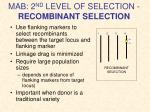 mab 2 nd level of selection recombinant selection