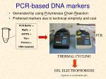 pcr based dna markers