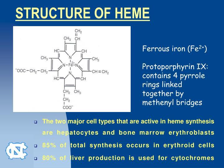 heme synthesis ppt
