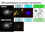 dm annihilation in cosmic structures