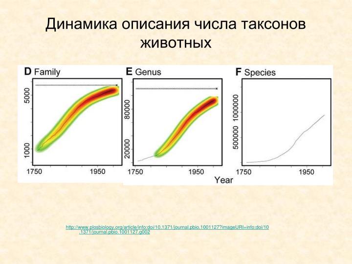 Динамика описания числа таксонов животных
