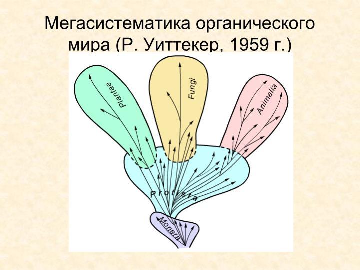 Мегасистематика органического мира (Р. Уиттекер, 1959 г.)