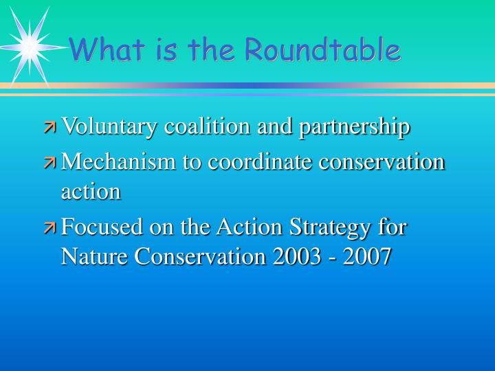 What is the roundtable