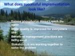 what does successful implementation look like