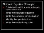 net ionic equation example