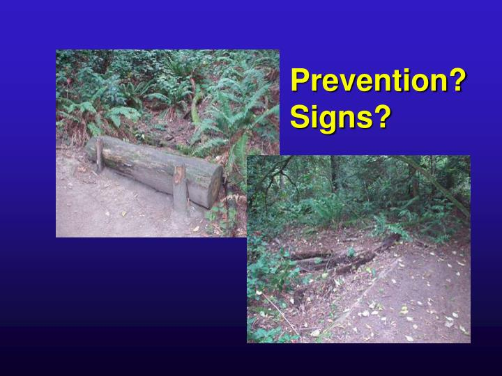 Prevention?
