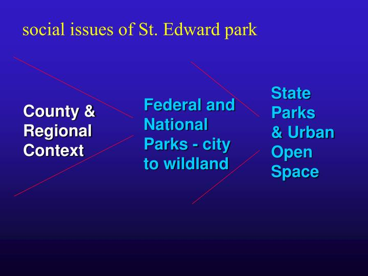 Social issues of St. Edward park