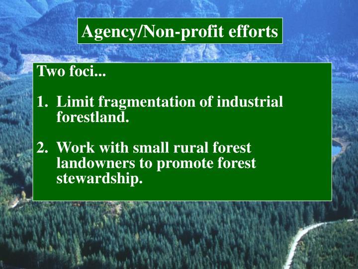 Agency/Non-profit efforts