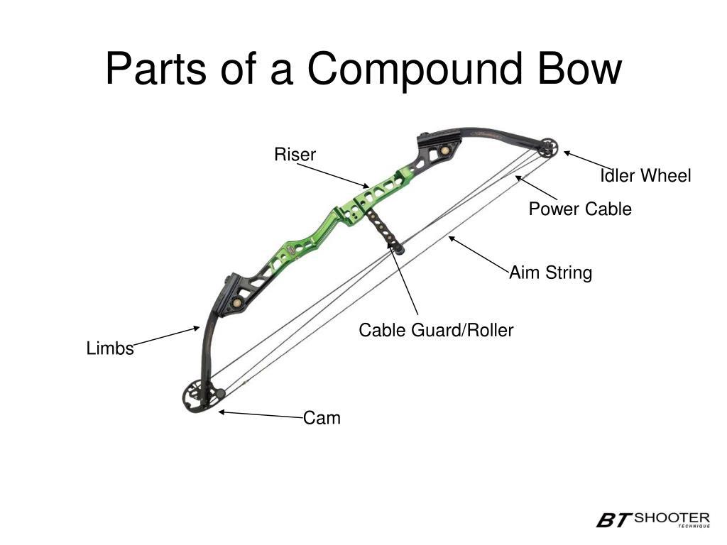 Ppt Compound Bow Archery Seminar Powerpoint Presentation