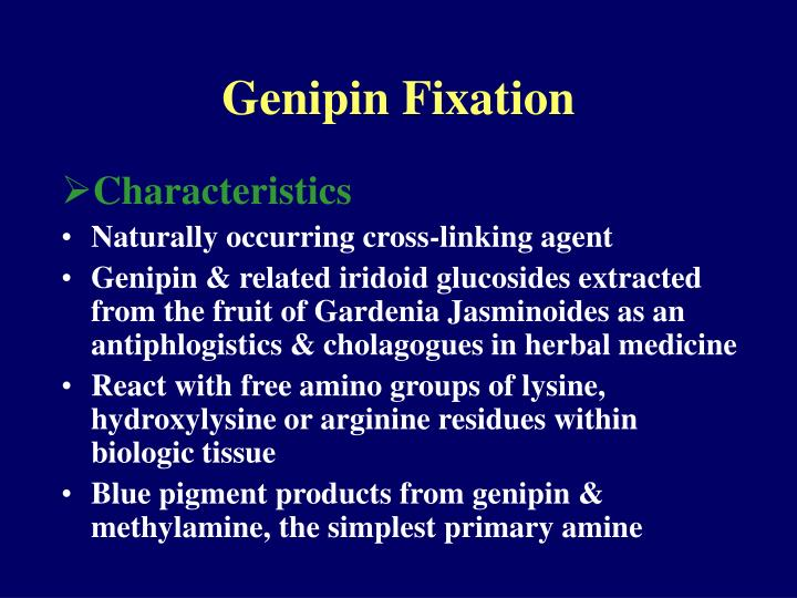 Genipin Fixation